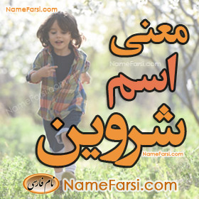 Shervin name meaning