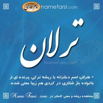 Tarlan name meaning
