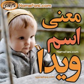 Vida name meaning