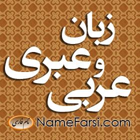 زبان عبری و عربی