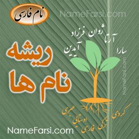 names' root